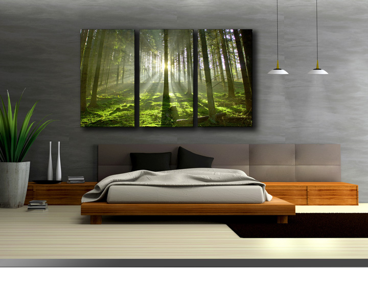 wald b ume lichtung. Black Bedroom Furniture Sets. Home Design Ideas