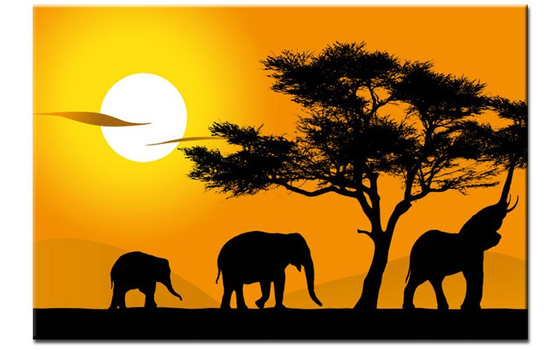 afrika safari elefanten. Black Bedroom Furniture Sets. Home Design Ideas