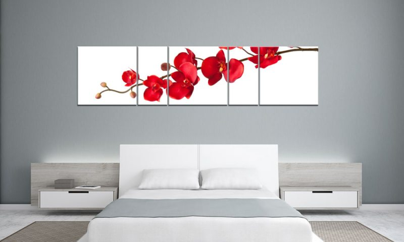 rote orchidee panorama. Black Bedroom Furniture Sets. Home Design Ideas