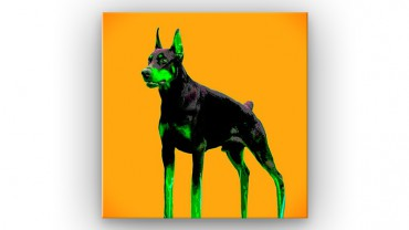 Dobermann Pop Art – Bild 1