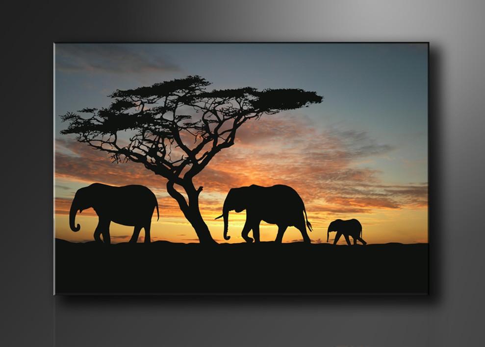 elefanten afrika sonnenuntergang. Black Bedroom Furniture Sets. Home Design Ideas