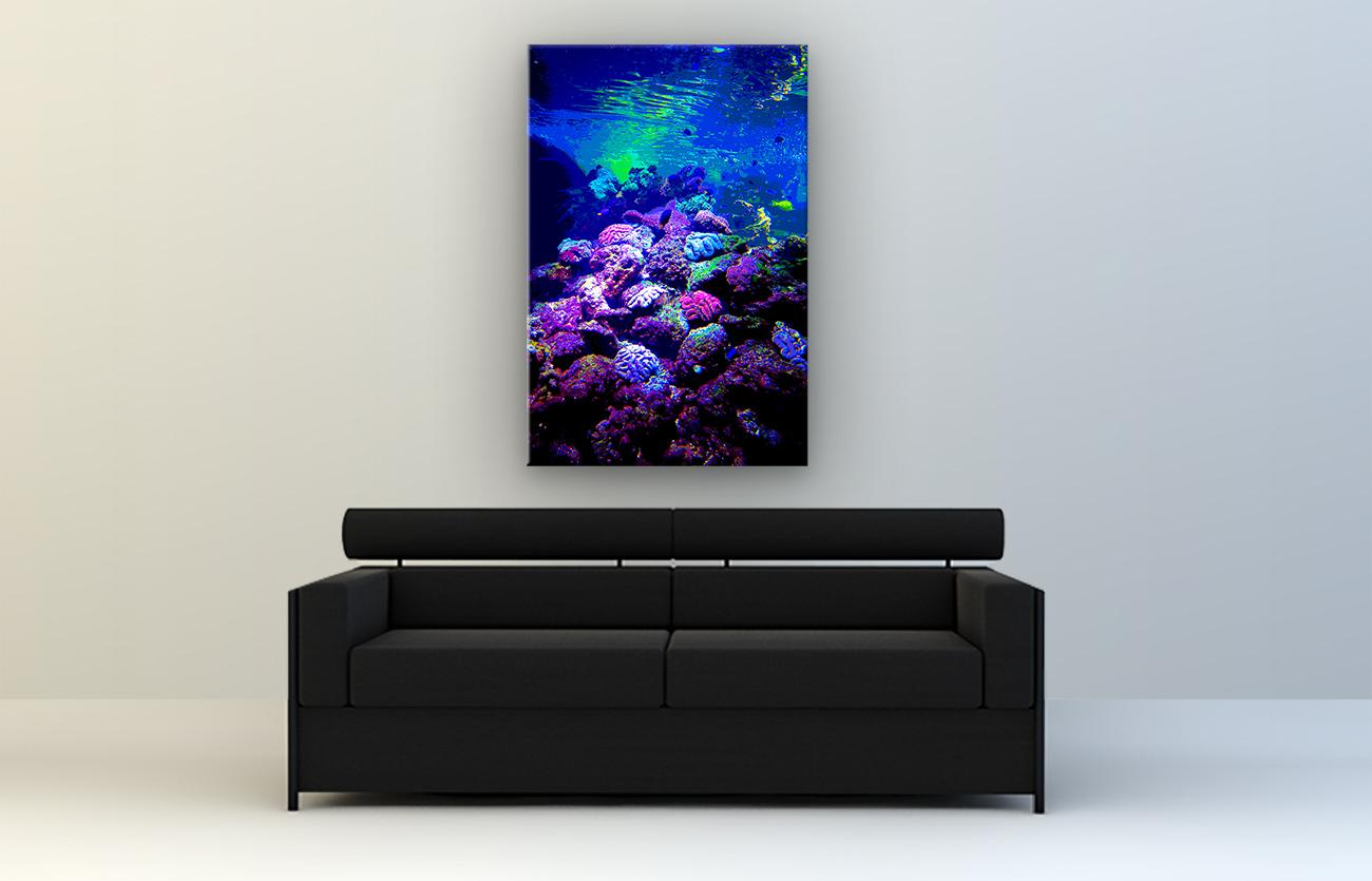 Aquarium Pop Art Bild 2