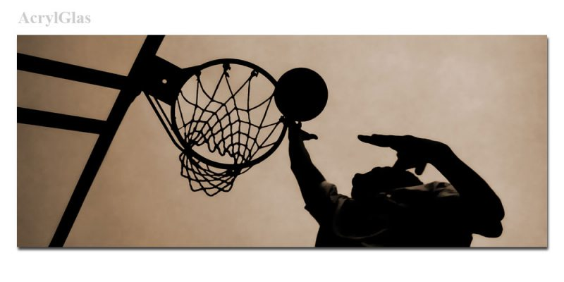 Basketball Korb 1